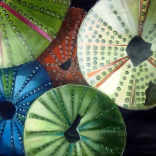 Quadro acrilico di gusci di ricci colorat