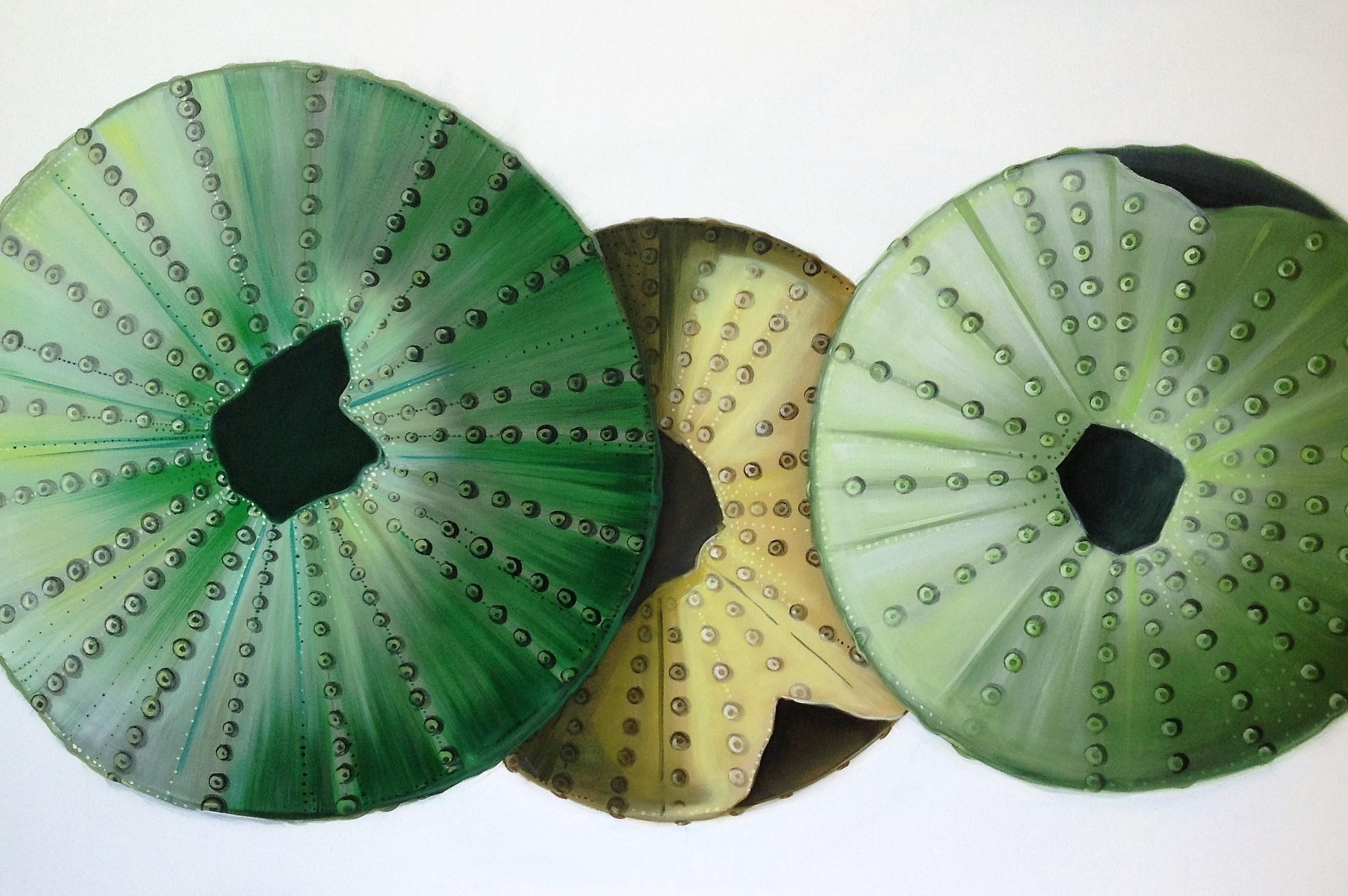 Quadro acrilico di gusci di ricci verdi
