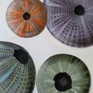 Quadro acrilico gusci di ricci di mare